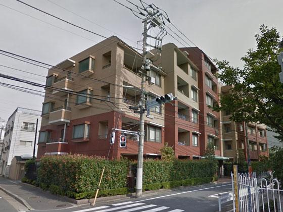 ガーデンホーム武蔵新田 概観